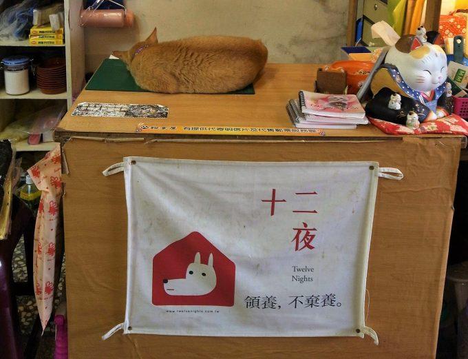 台湾の猫村のホウトンの寝る猫の写真
