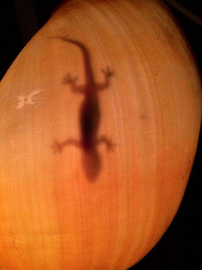 ギガンテスハイダウェイツーリストリゾートのランプの写真