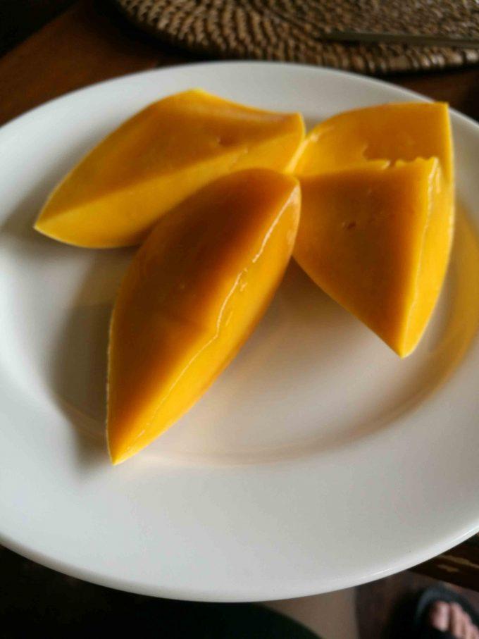 ミニロックリゾートのマンゴーの写真