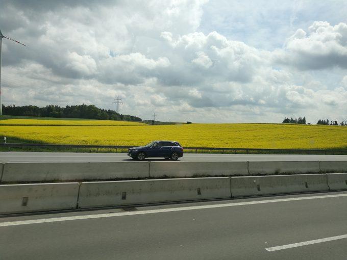 ミュンヘンからプラハまでの車窓からの菜の花畑の写真